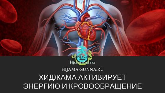 энергия и кровообращение